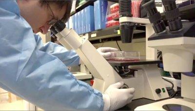Cocamide DEA провоцирует развитие раковых образований. Но почему вещество добавляют в шампунь?