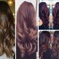 Шатен - цвет волос у женщин. Оттенки цвета шатен