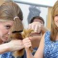 Как подравнять длинные волосы в домашних условиях: пошаговая инструкция с описанием и фото, советы профессионалов