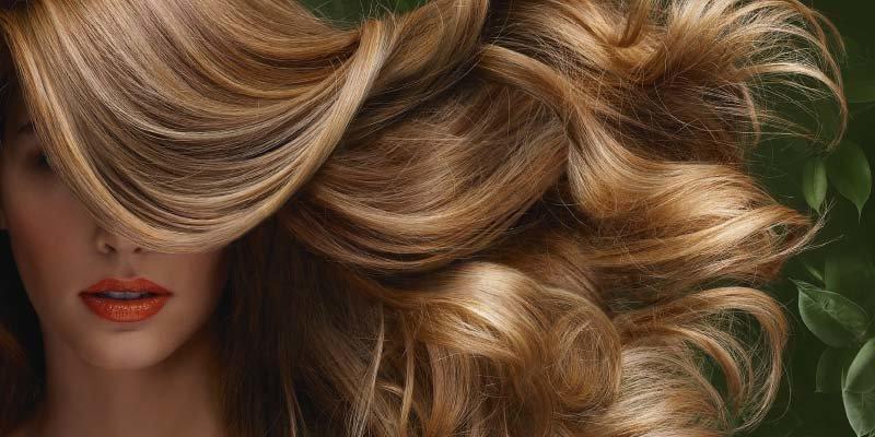 Краска для волос phyto 2