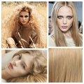 Цвет волос пшеничный: какому типу внешности подходит, правила подбора оттенка
