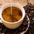 Фото цвета волос кофе с молоком (фото, краска, отзывы)
