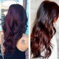 Цвет волос: палитра красок для волос на любой вкус, рейтинг лучших, особенности и нюансы окраски и последующий уход