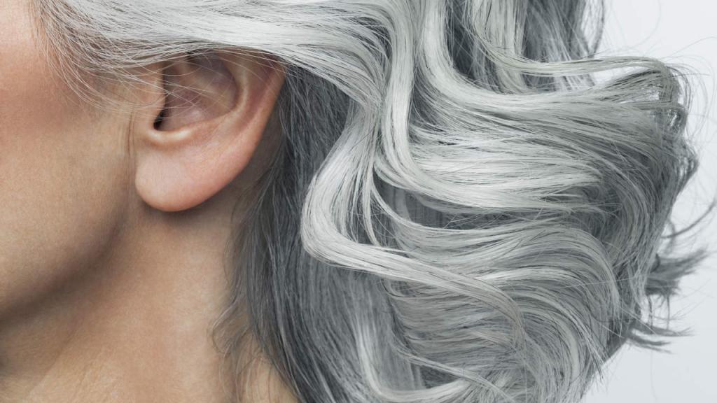 Цвет волос для седых волос